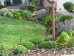Landscaping Company Colorado Springs