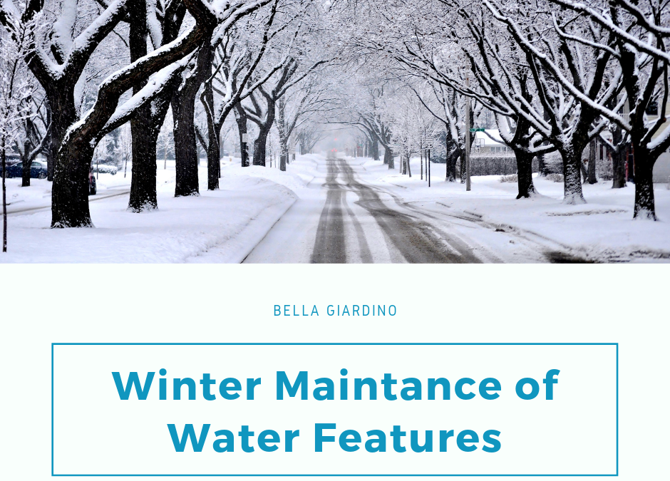 Winter maintance of Water Features