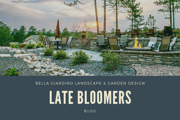 Late Bloomers - Landscape Blogs