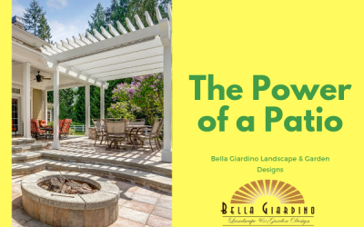 The Power of a Patio