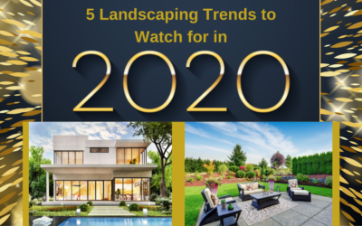 5 Landscaping Trends to Watch for in 2020