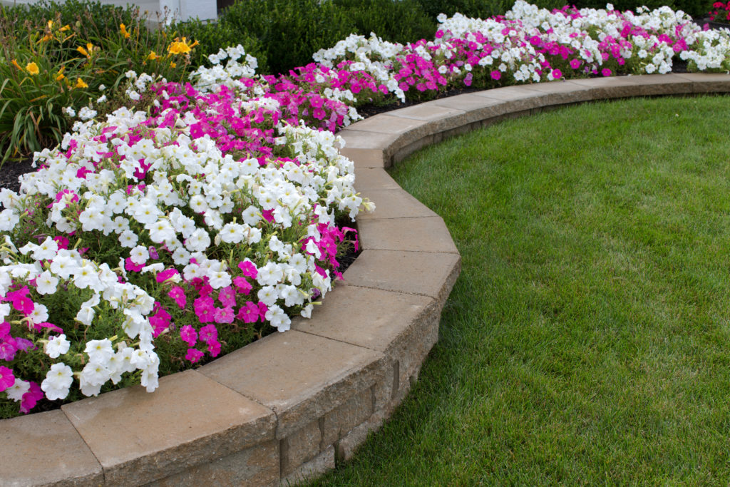 Retaining Wall Professionals