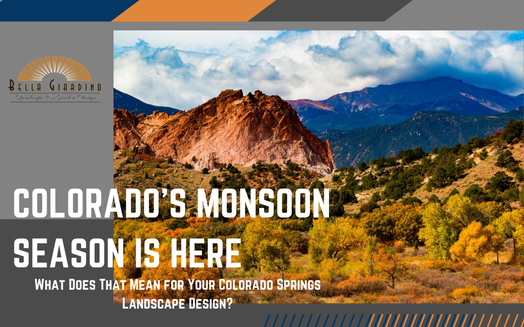 Colorado's Monsoon Season is Here – What Does That Mean for Your Colorado Springs Landscape Design?