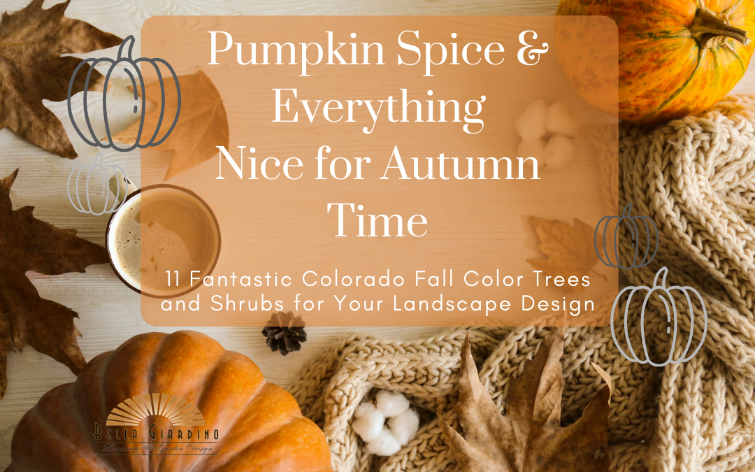 Pumpkin Spice & Everything Nice for Autumn Time