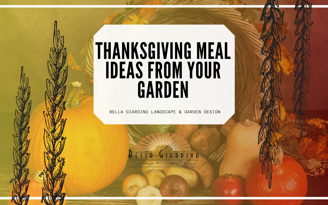 Thanksgiving Meal Ideas from Your Garden